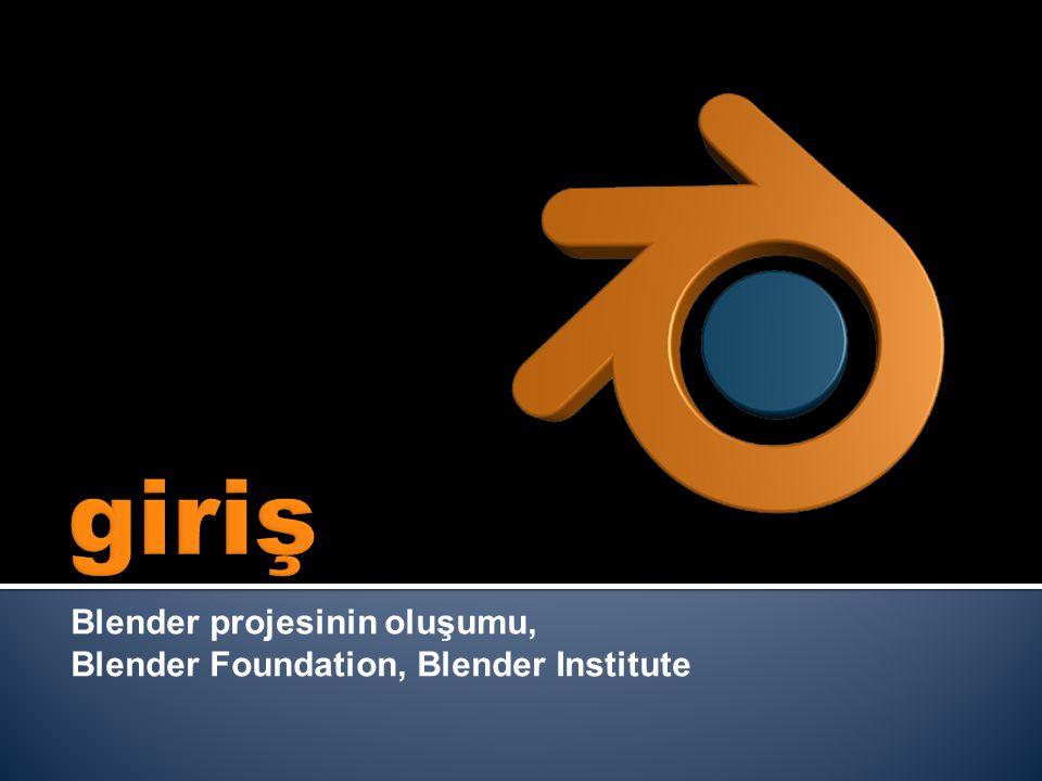 Blender projesinin oluşumu, Blender Foundation, Blender Institute