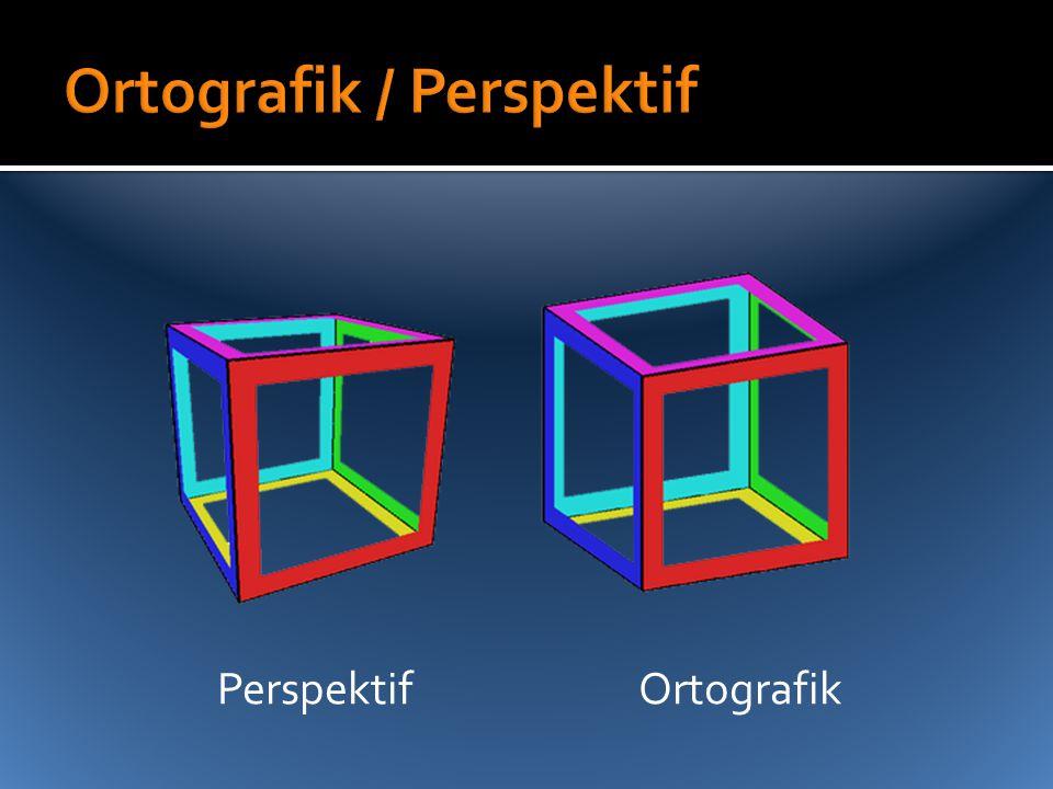 Ortografik / Perspektif