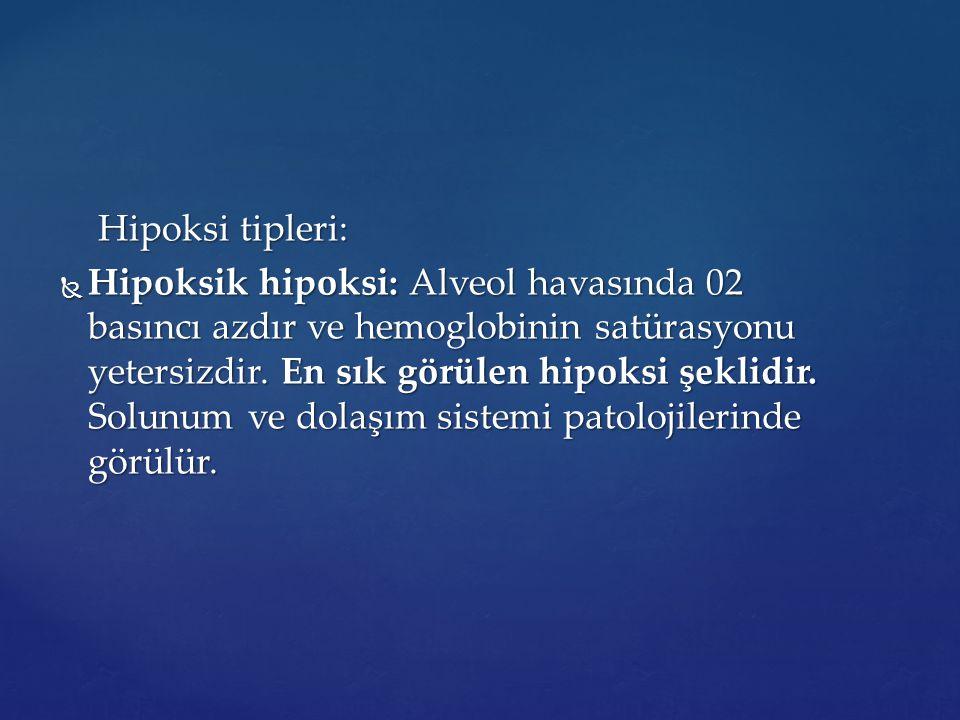 Hipoksi tipleri: