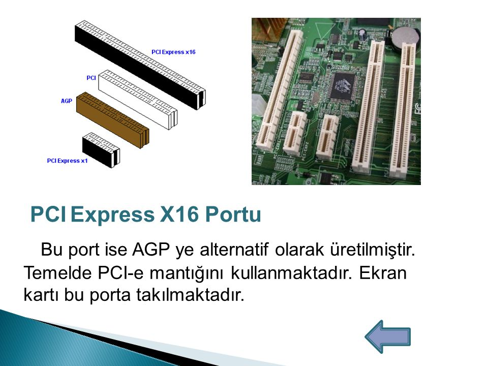 PCI Express X16 Portu
