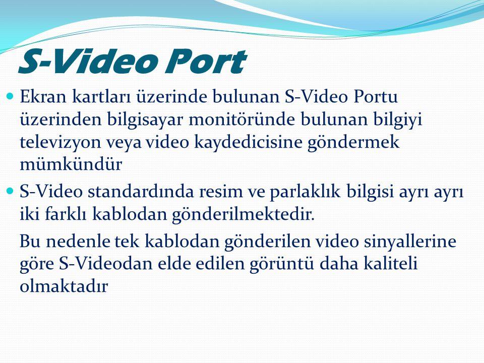 S-Video Port