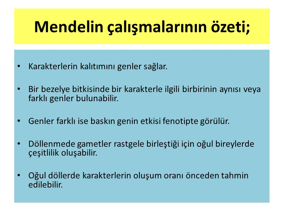 Mendelin çalışmalarının özeti;