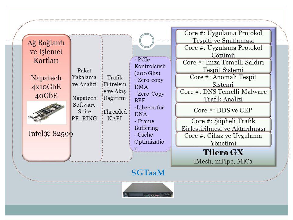Tilera GX SGTaaM Ağ Bağlantı ve İşlemci Kartları Napatech 4x10GbE