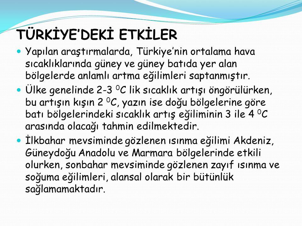 TÜRKİYE'DEKİ ETKİLER