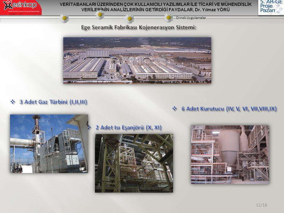 Ege Seramik Fabrikası Kojenerasyon Sistemi: