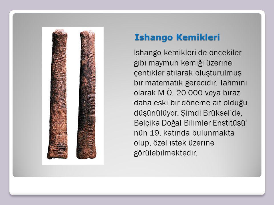 Ishango Kemikleri