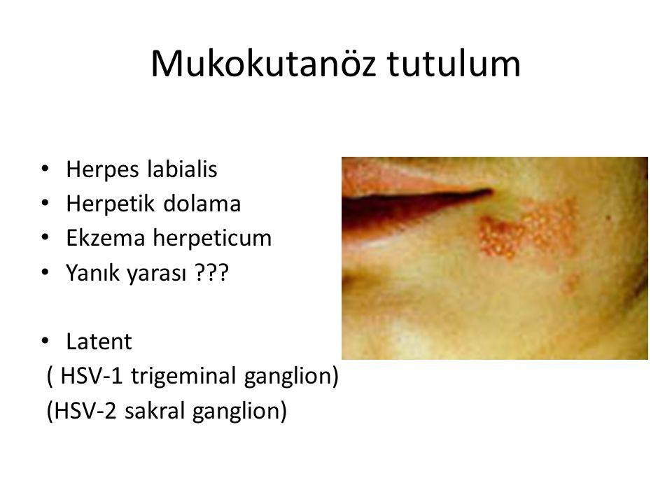 Mukokutanöz tutulum Herpes labialis Herpetik dolama Ekzema herpeticum