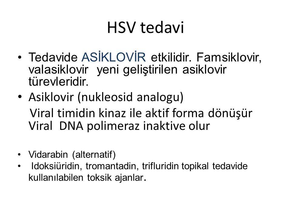 HSV tedavi Asiklovir (nukleosid analogu)