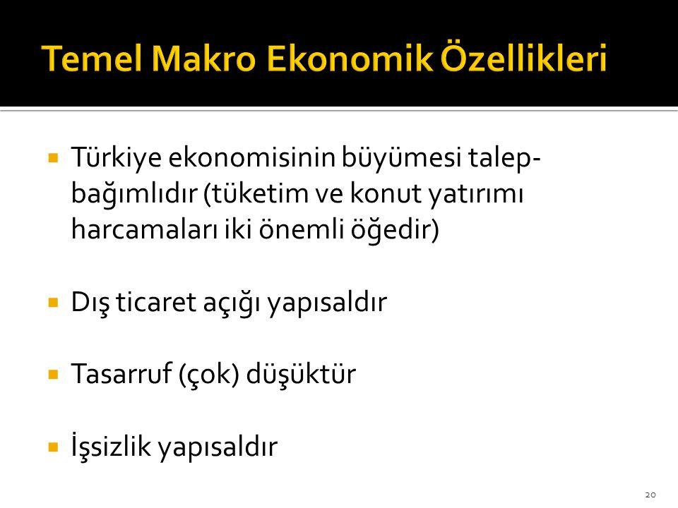 Temel Makro Ekonomik Özellikleri