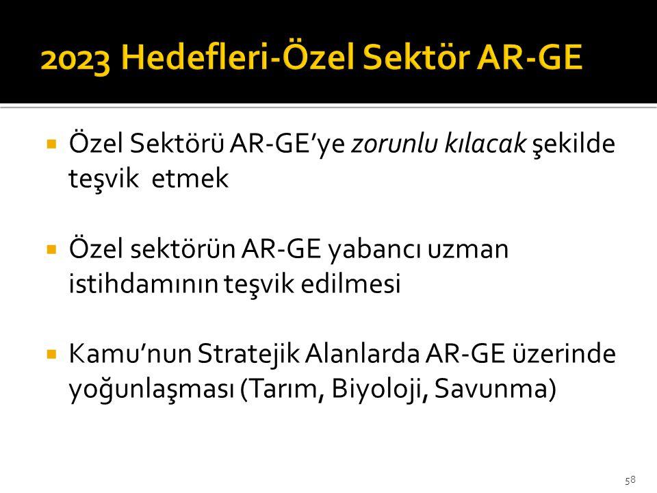 2023 Hedefleri-Özel Sektör AR-GE