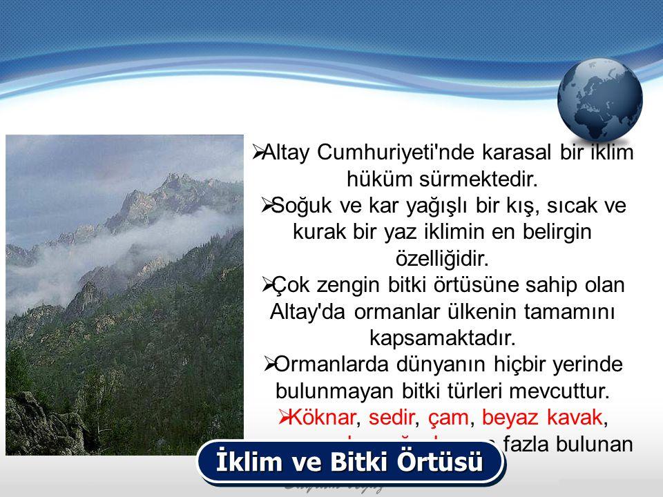 Altay Cumhuriyeti nde karasal bir iklim hüküm sürmektedir.