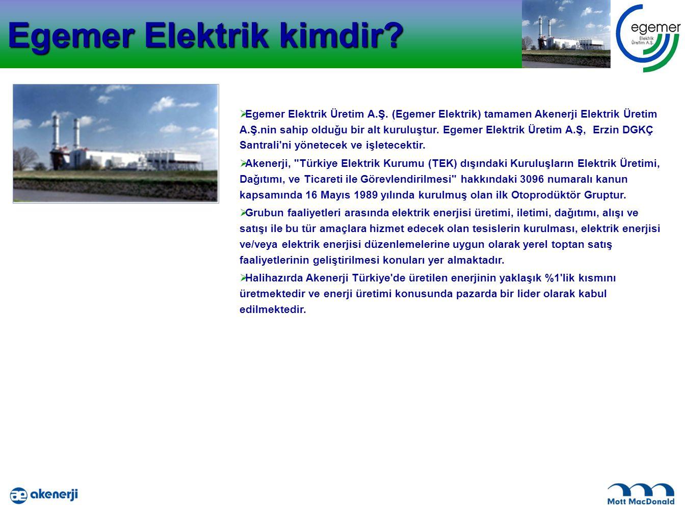 Egemer Elektrik kimdir