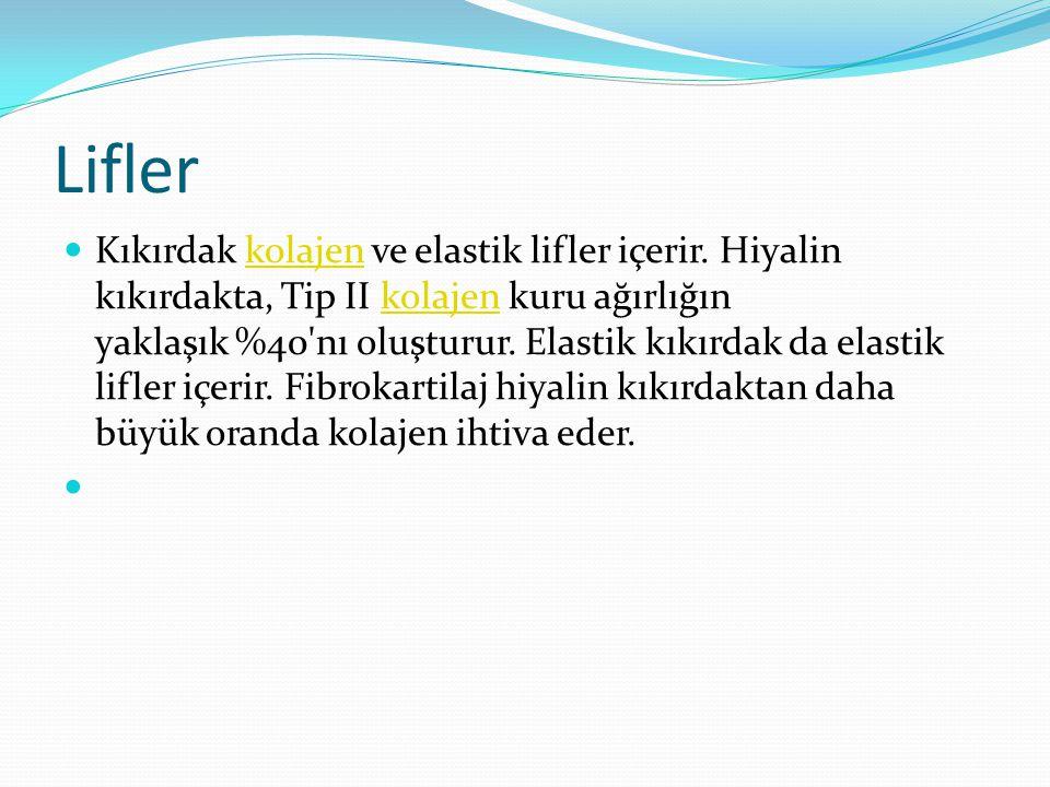 Lifler