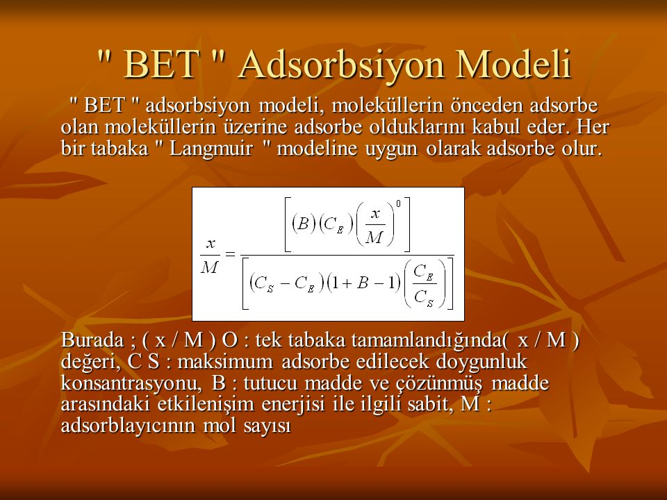 BET Adsorbsiyon Modeli
