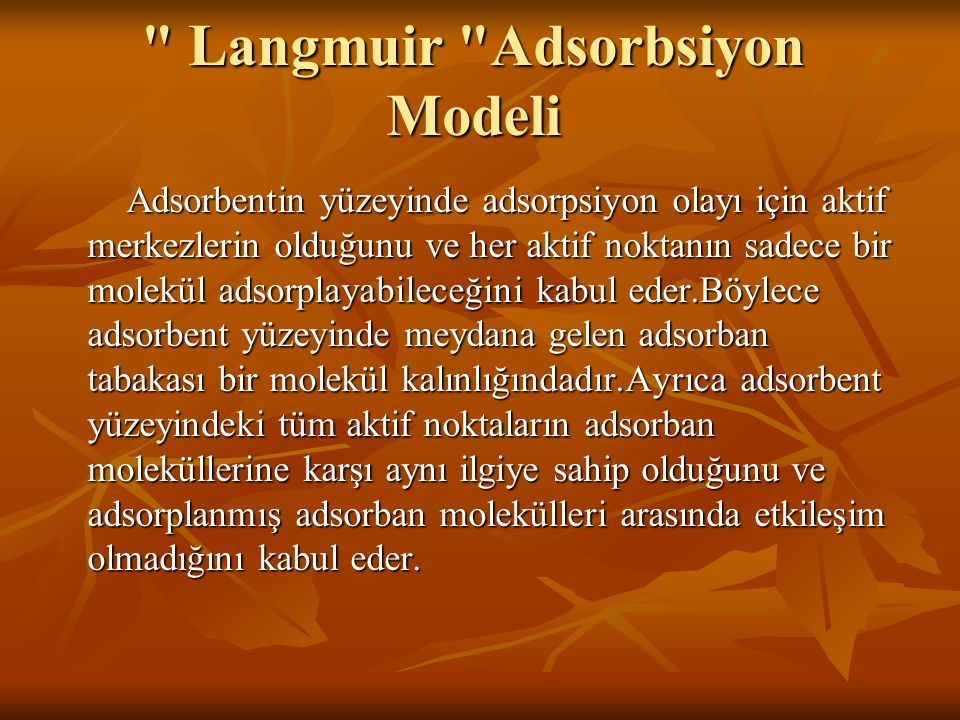 Langmuir Adsorbsiyon Modeli