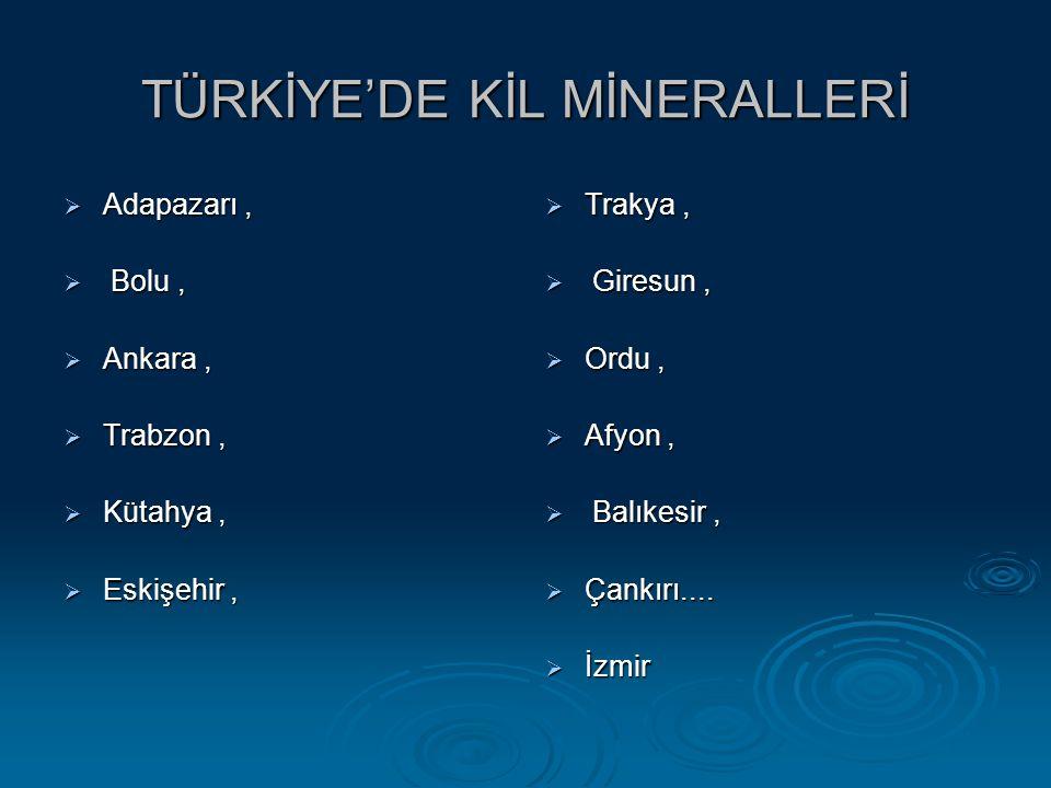 TÜRKİYE'DE KİL MİNERALLERİ