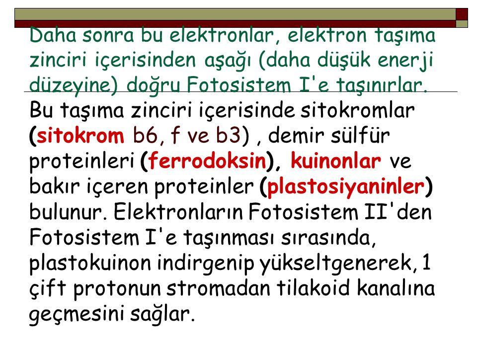 Daha sonra bu elektronlar, elektron taşıma zinciri içerisinden aşağı (daha düşük enerji düzeyine) doğru Fotosistem I e taşınırlar.