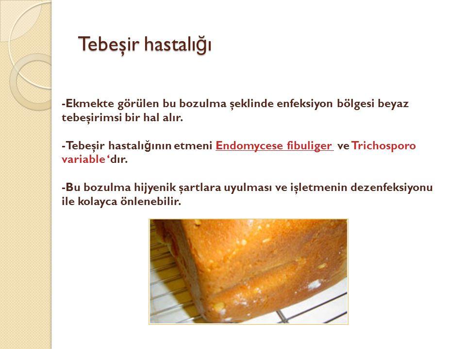 Tebeşir hastalığı -Ekmekte görülen bu bozulma şeklinde enfeksiyon bölgesi beyaz tebeşirimsi bir hal alır.