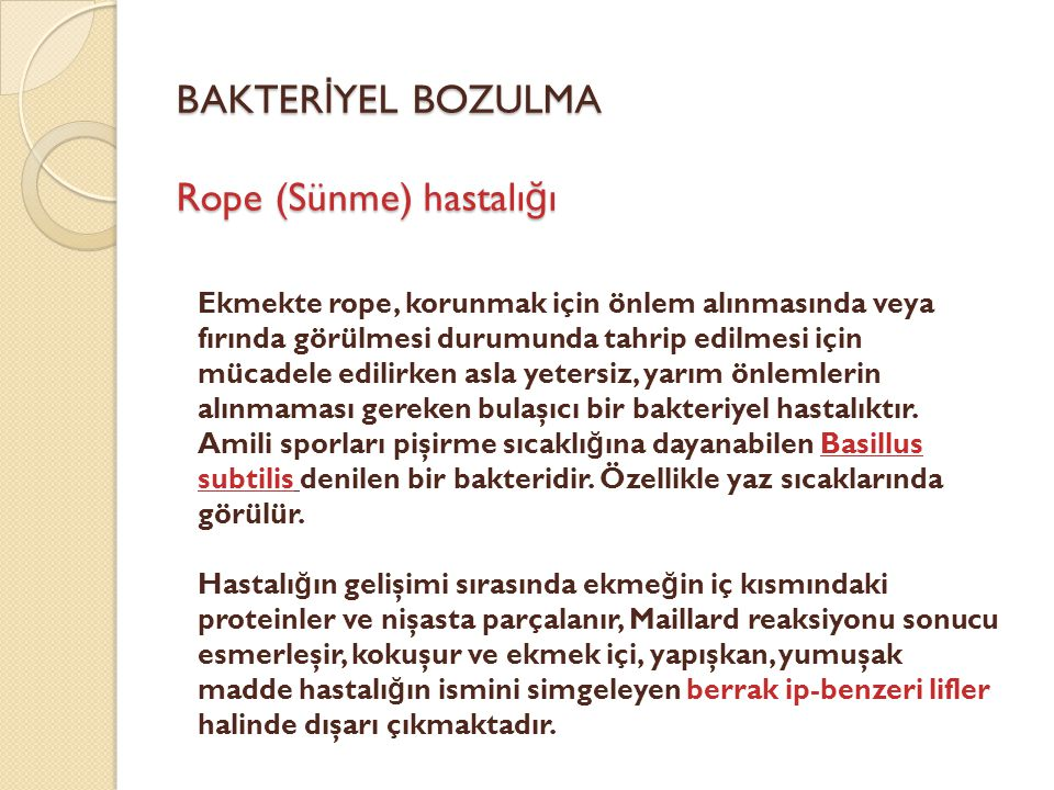 BAKTERİYEL BOZULMA Rope (Sünme) hastalığı