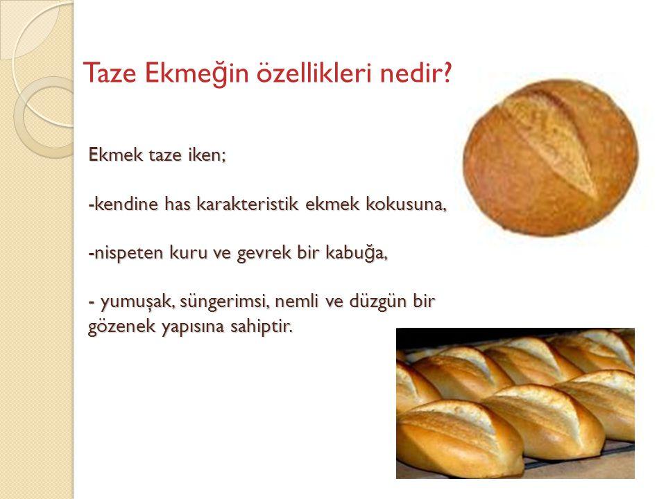 Taze Ekmeğin özellikleri nedir