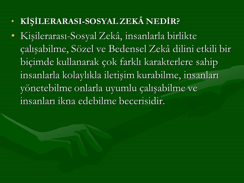 KİŞİLERARASI-SOSYAL ZEKÂ NEDİR