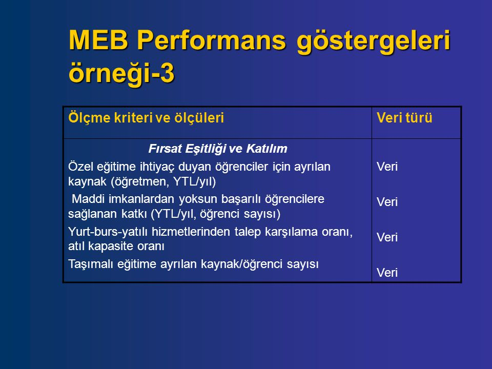 MEB Performans göstergeleri örneği-3