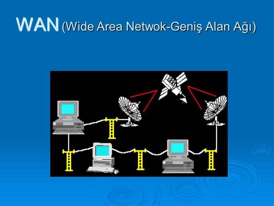 WAN (Wide Area Netwok-Geniş Alan Ağı)