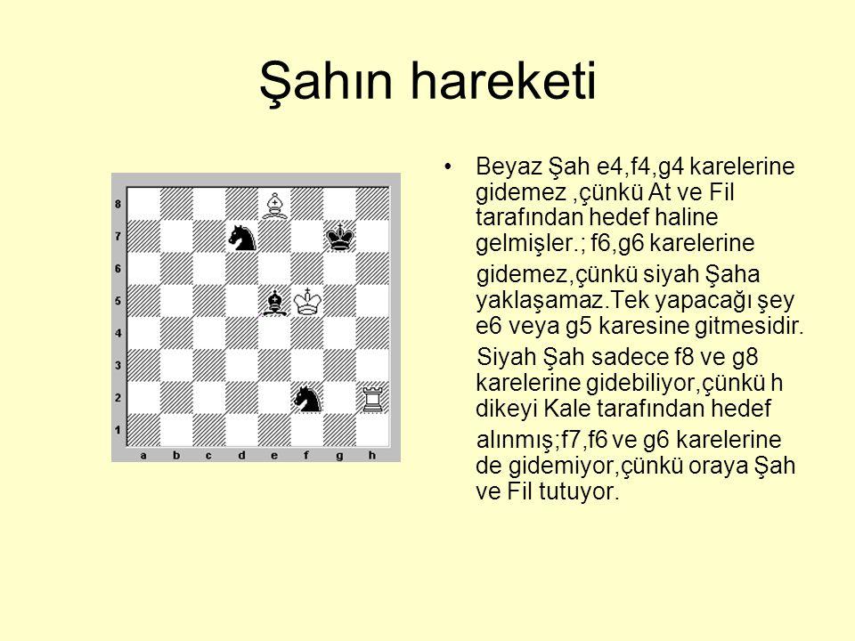Şahın hareketi Beyaz Şah e4,f4,g4 karelerine gidemez ,çünkü At ve Fil tarafından hedef haline gelmişler.; f6,g6 karelerine.