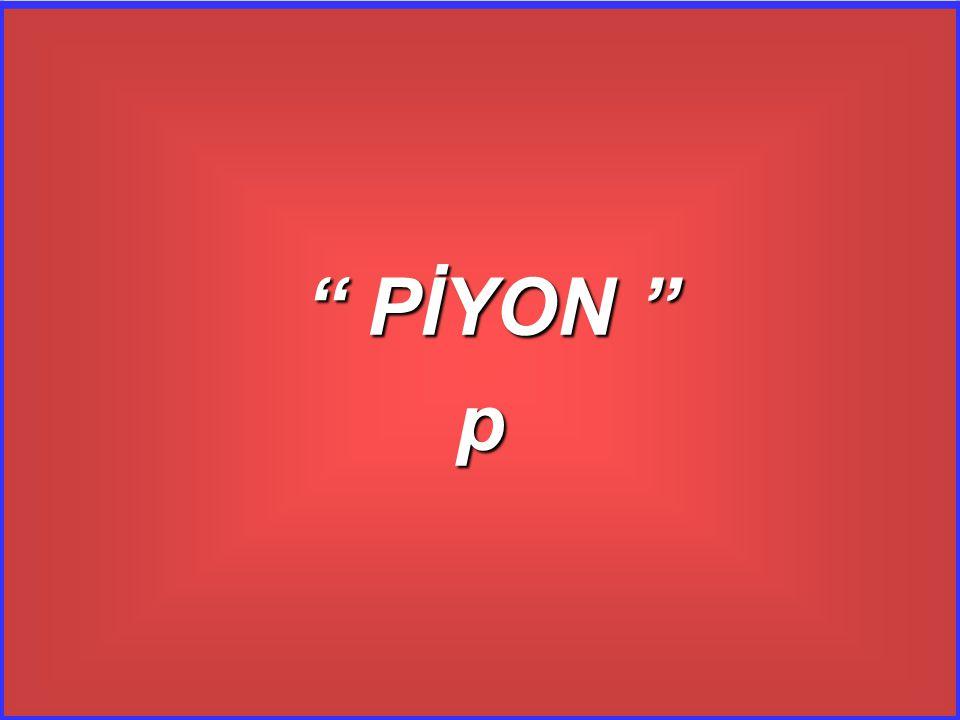 PİYON p