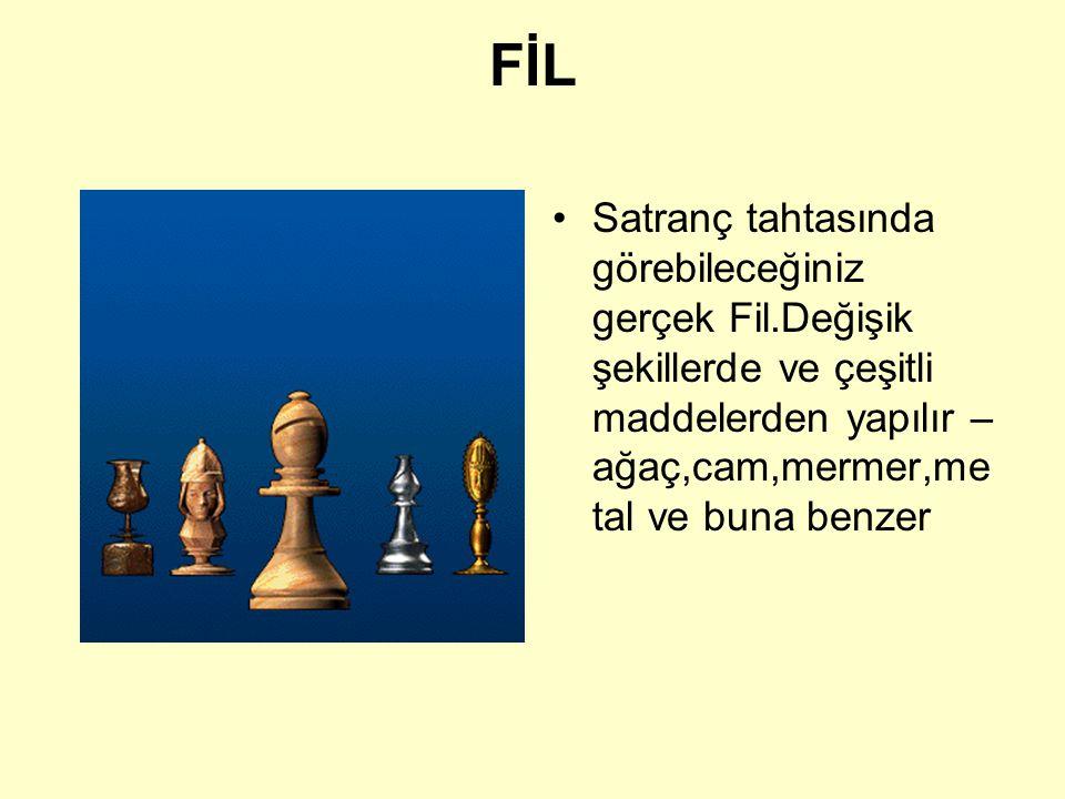 FİL Satranç tahtasında görebileceğiniz gerçek Fil.Değişik şekillerde ve çeşitli maddelerden yapılır – ağaç,cam,mermer,metal ve buna benzer.