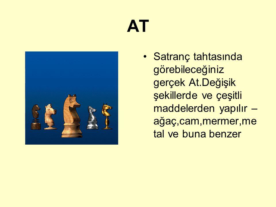 AT Satranç tahtasında görebileceğiniz gerçek At.Değişik şekillerde ve çeşitli maddelerden yapılır – ağaç,cam,mermer,metal ve buna benzer.