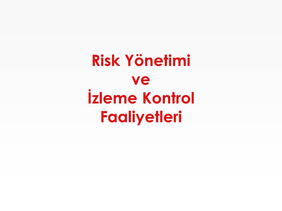 Risk Yönetimi ve İzleme Kontrol Faaliyetleri