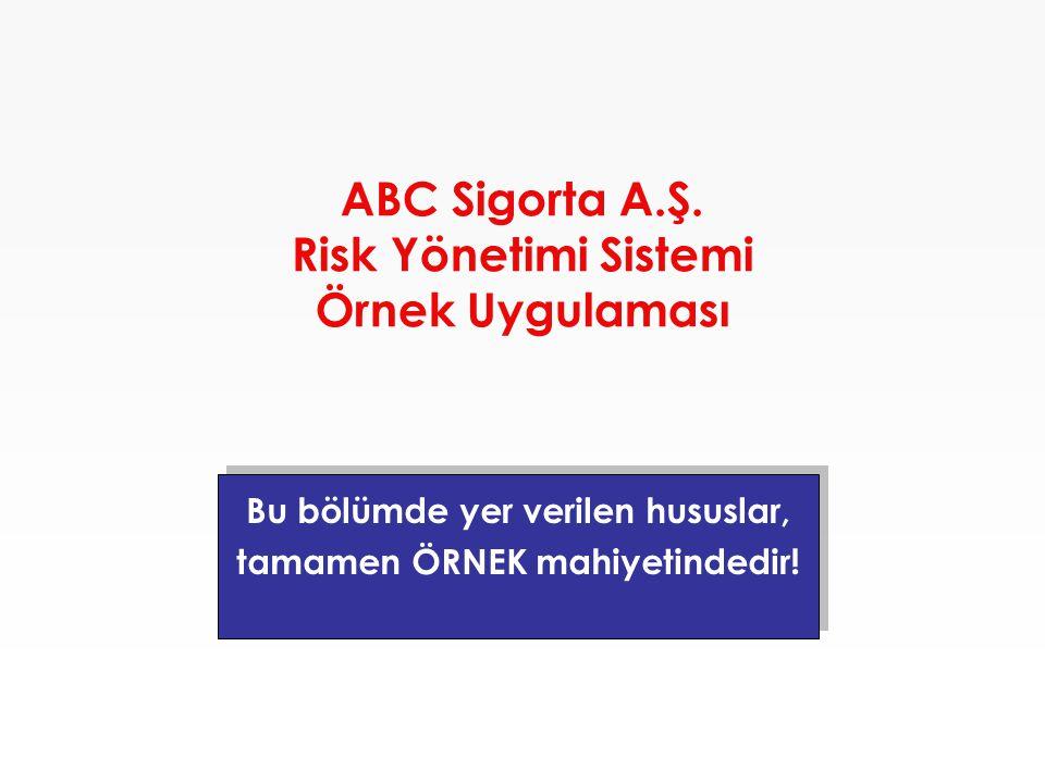 ABC Sigorta A.Ş. Risk Yönetimi Sistemi Örnek Uygulaması