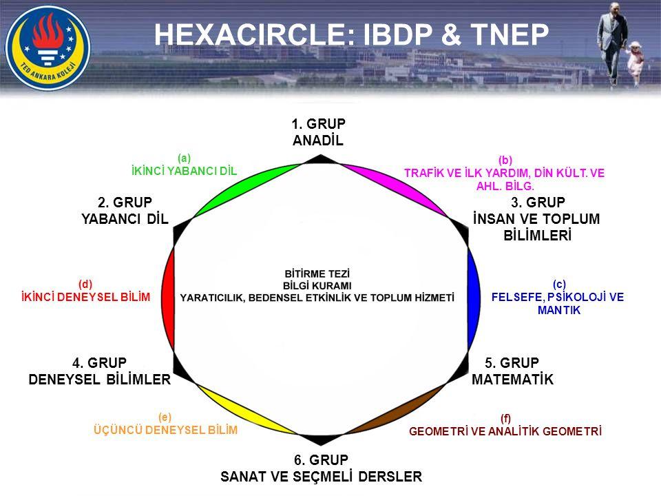 HEXACIRCLE: IBDP & TNEP
