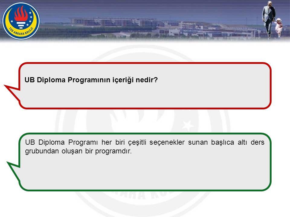 UB Diploma Programının içeriği nedir