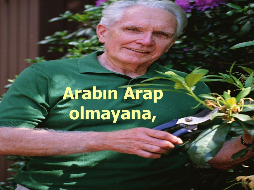 Arabın Arap olmayana,