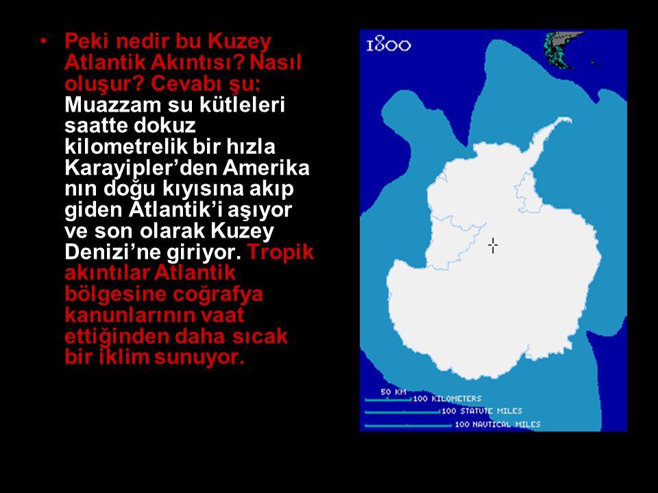 Peki nedir bu Kuzey Atlantik Akıntısı. Nasıl oluşur