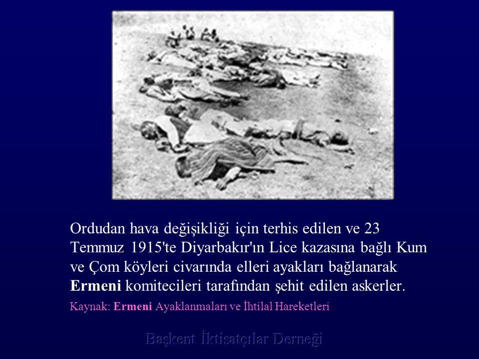 Ordudan hava değişikliği için terhis edilen ve 23 Temmuz 1915 te Diyarbakır ın Lice kazasına bağlı Kum ve Çom köyleri civarında elleri ayakları bağlanarak Ermeni komitecileri tarafından şehit edilen askerler.