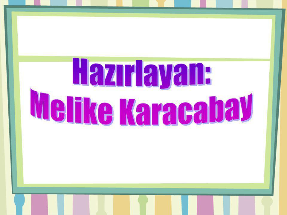 Hazırlayan: Melike Karacabay