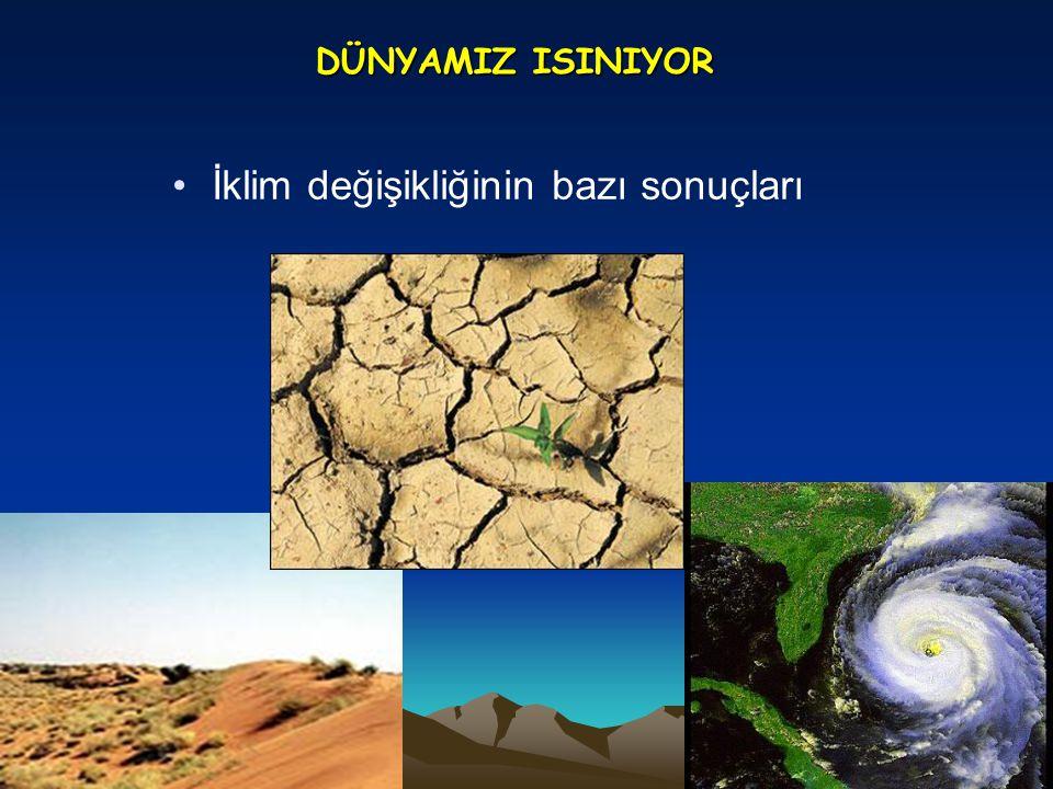 İklim değişikliğinin bazı sonuçları