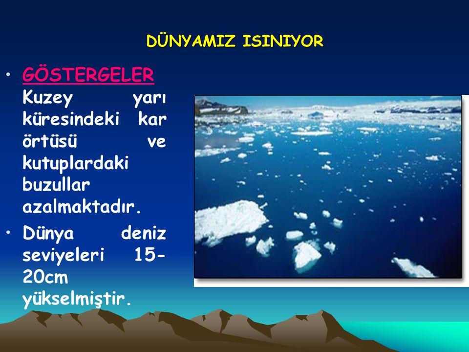 Dünya deniz seviyeleri 15-20cm yükselmiştir.