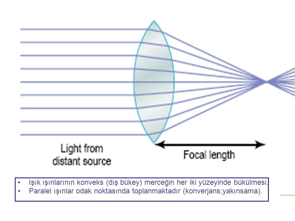 Işık ışınlarının konveks (dış bükey) merceğin her iki yüzeyinde bükülmesi.