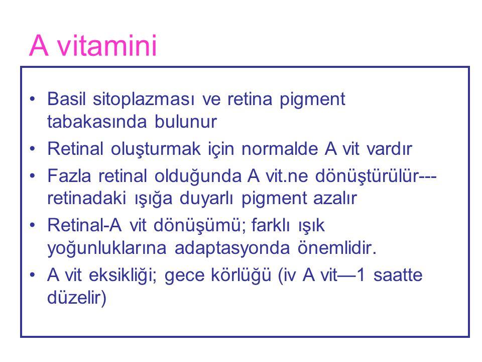 A vitamini Basil sitoplazması ve retina pigment tabakasında bulunur