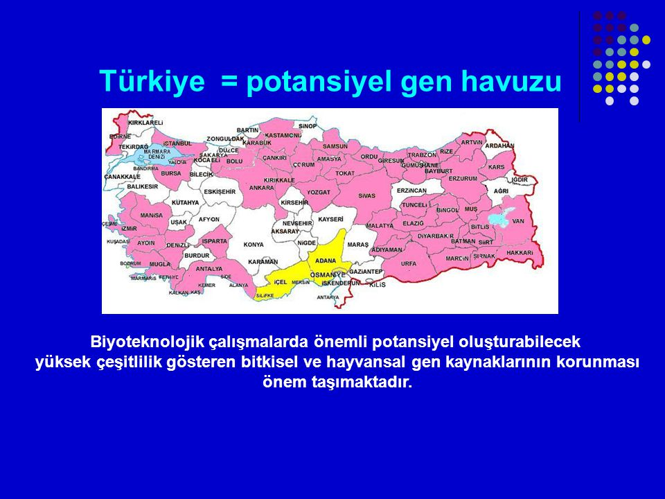 Türkiye = potansiyel gen havuzu