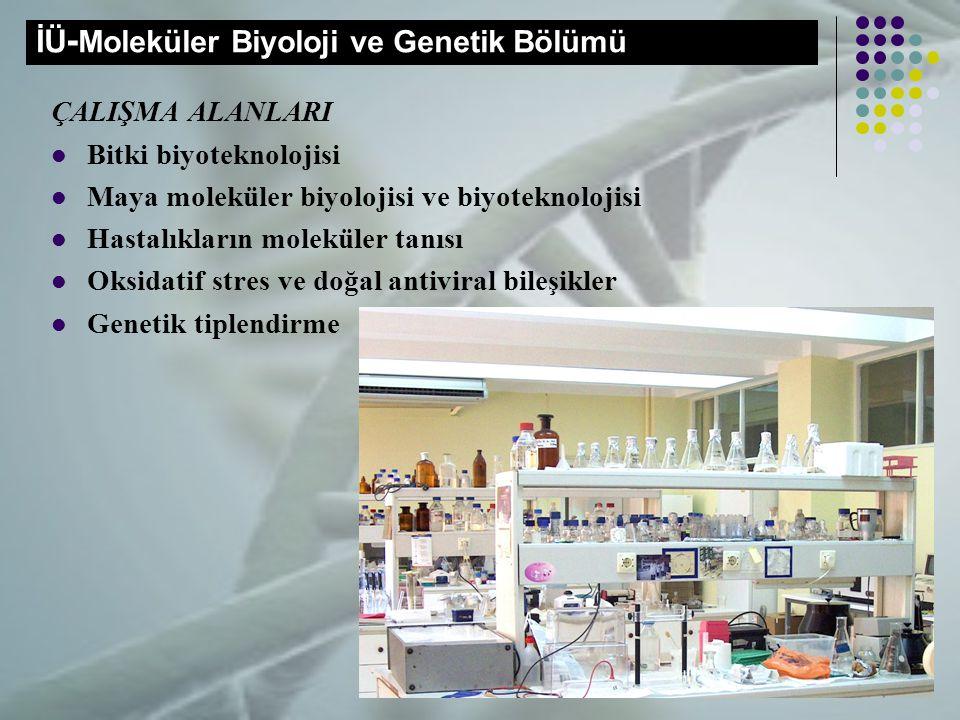 İÜ-Moleküler Biyoloji ve Genetik Bölümü