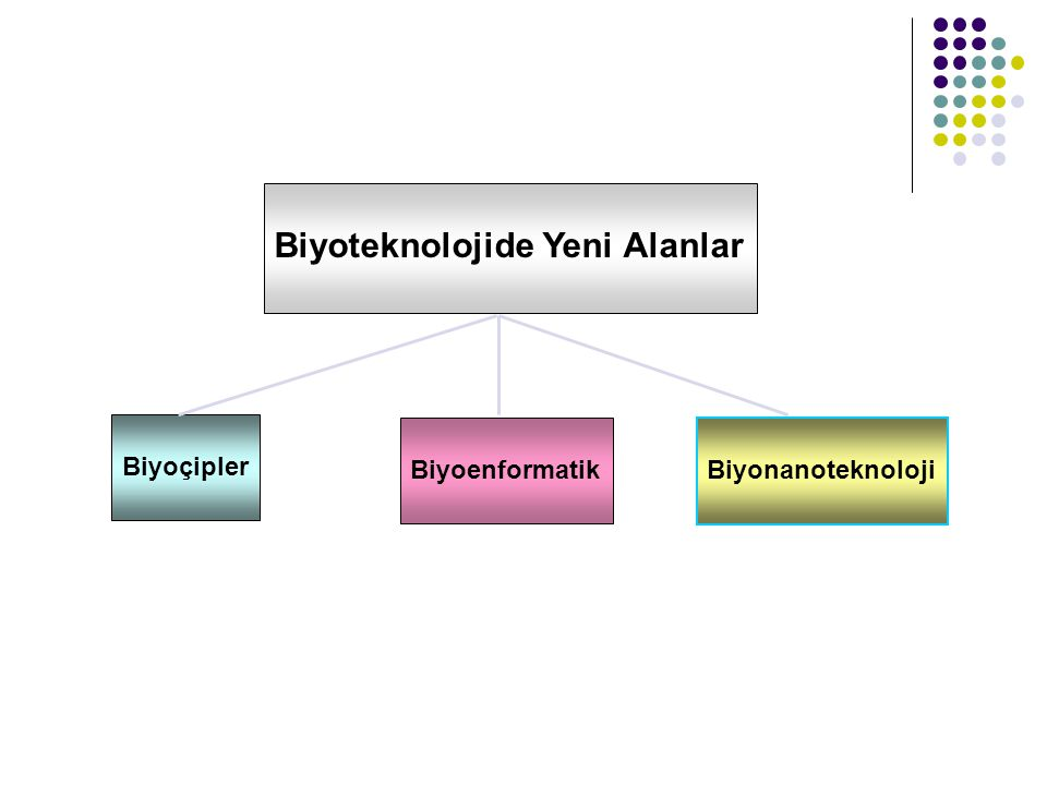 Biyoteknolojide Yeni Alanlar