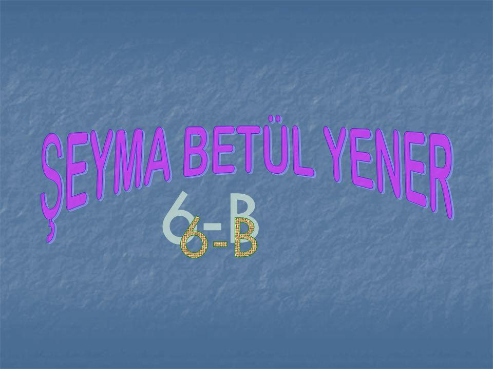 ŞEYMA BETÜL YENER 6-B