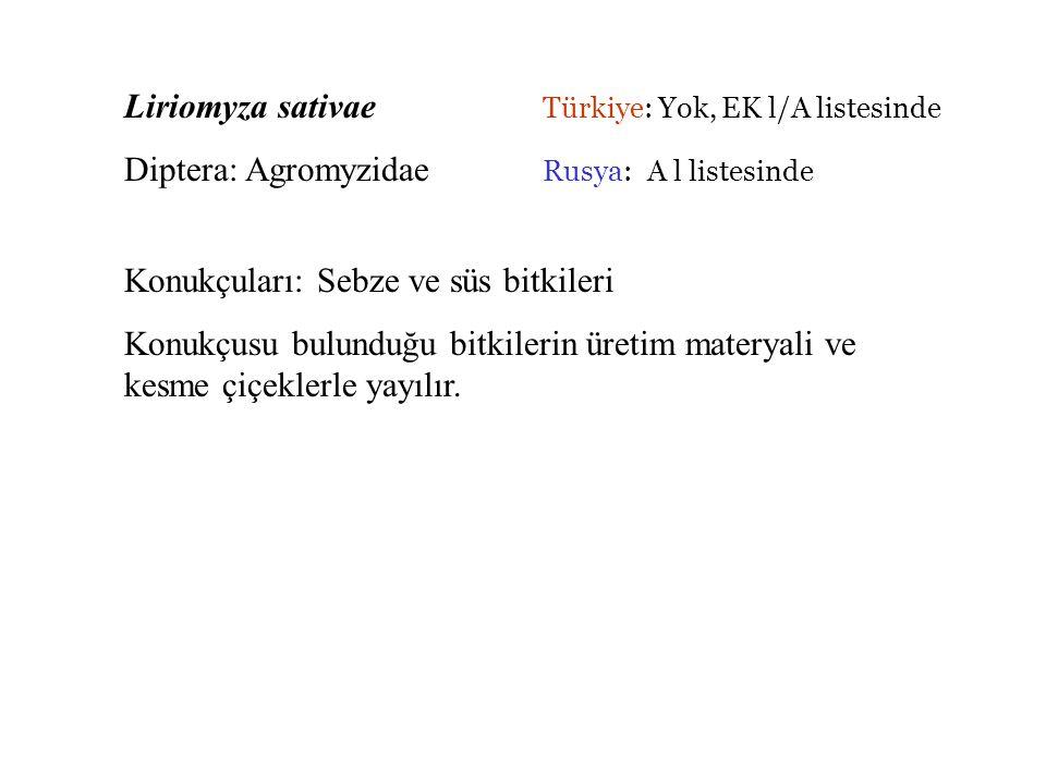 Liriomyza sativae Türkiye: Yok, EK l/A listesinde