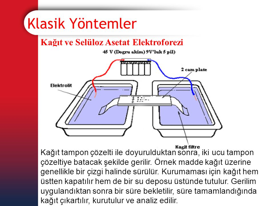 Klasik Yöntemler Kağıt ve Selüloz Asetat Elektroforezi