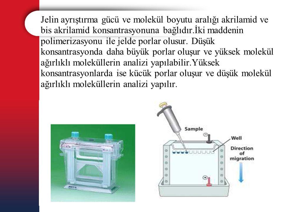 Jelin ayrıştırma gücü ve molekül boyutu aralığı akrilamid ve bis akrilamid konsantrasyonuna bağlıdır.İki maddenin polimerizasyonu ile jelde porlar olusur.